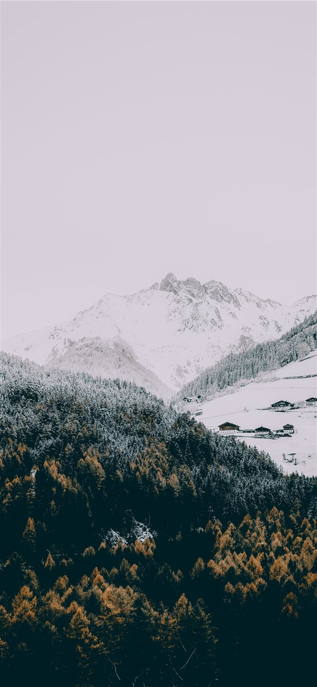 Winter iPhone X wallpaper