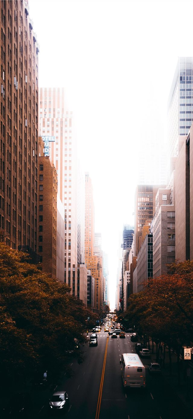 Autumn In Tudor City Iphone X Wallpapers Free Download