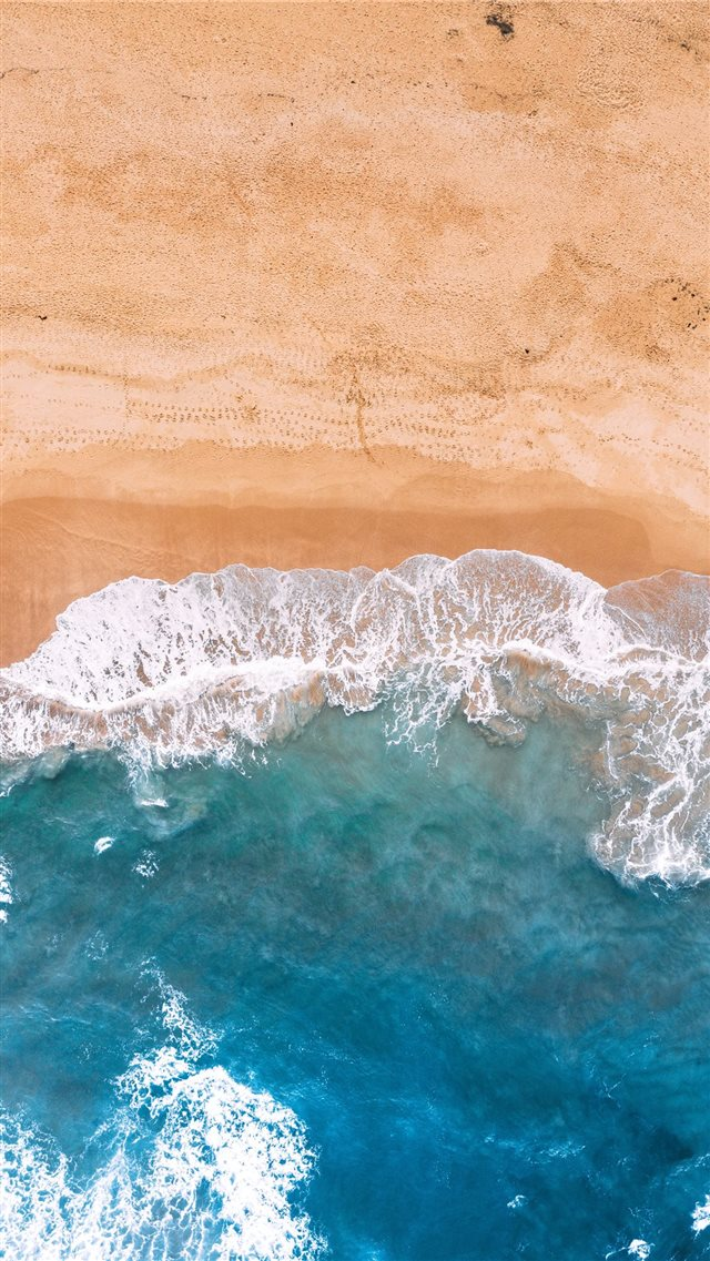 Found on the beachside' iPhone 8 wallpaper