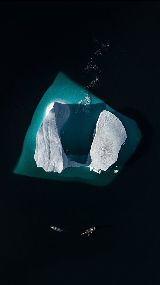 Iceberg in the Arctic  from above iPhone 8 wallpaper
