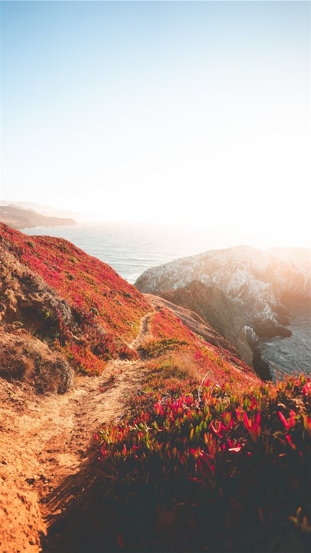 Path to the Point iPhone SE wallpaper