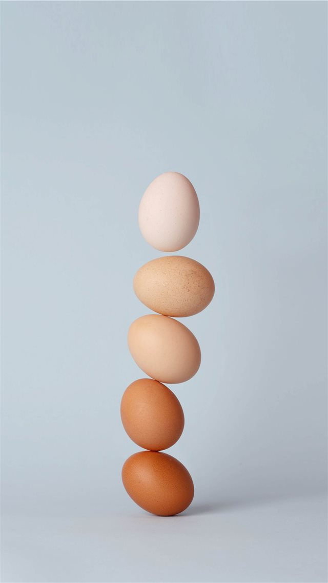 egg iPhone SE wallpaper