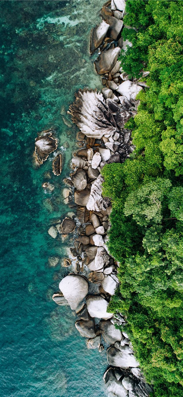 tioman island iPhone 11 wallpaper