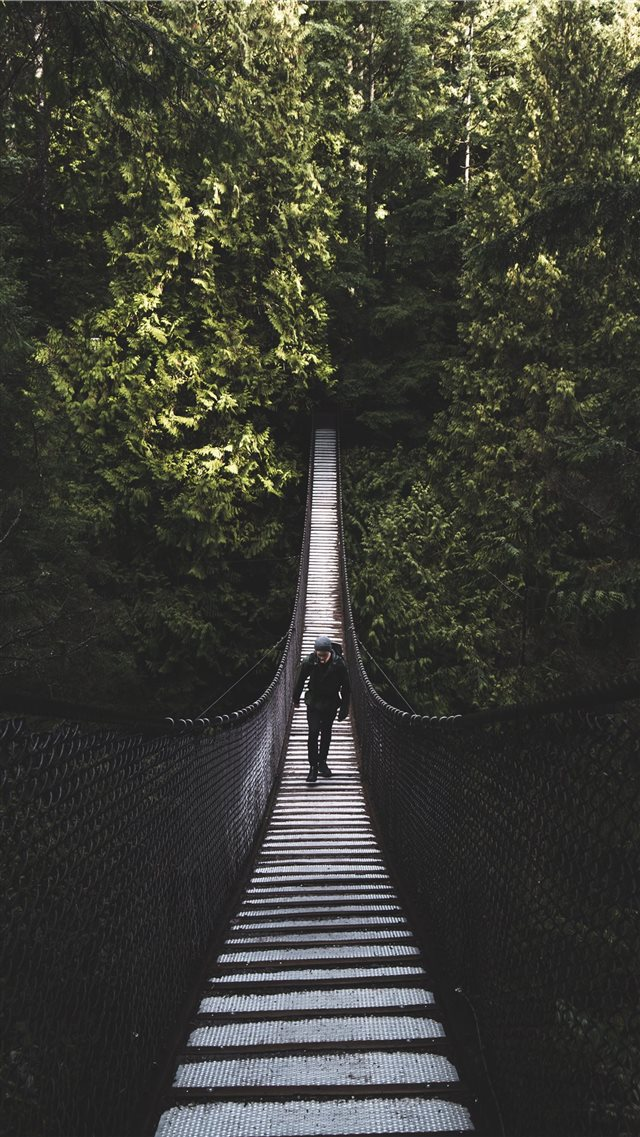 Lynn Canyon Suspension Bridge  North Vancouver  Ca... iPhone SE wallpaper