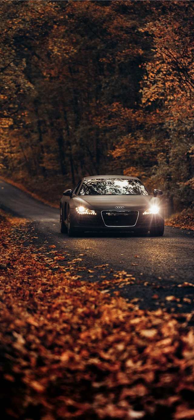 Fall Drives on Country Roads iPhone 11 wallpaper