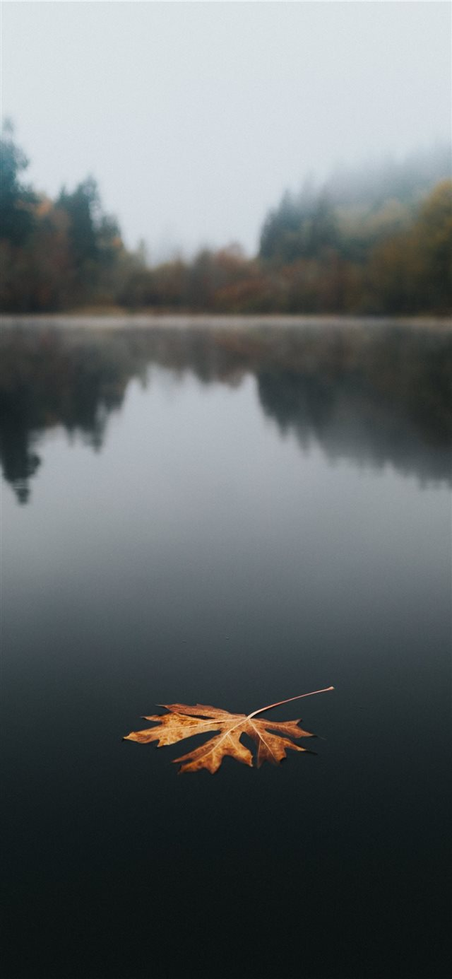 Floating iPhone X wallpaper