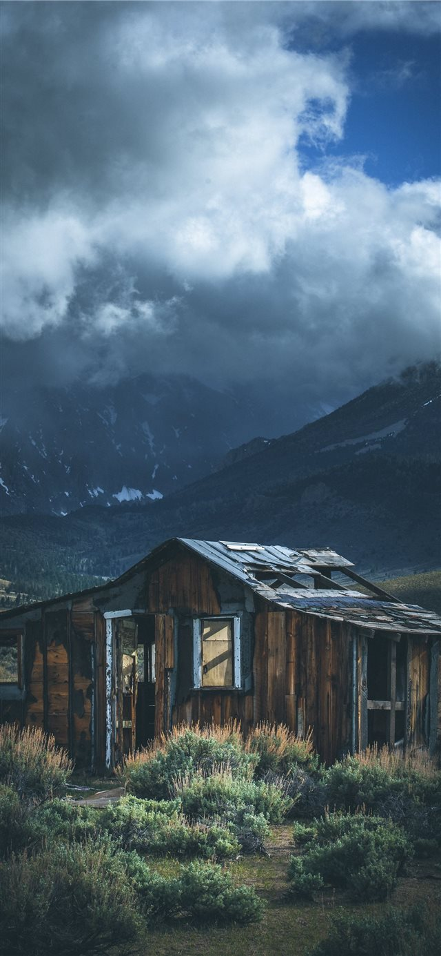 Forgotten iPhone 11 wallpaper