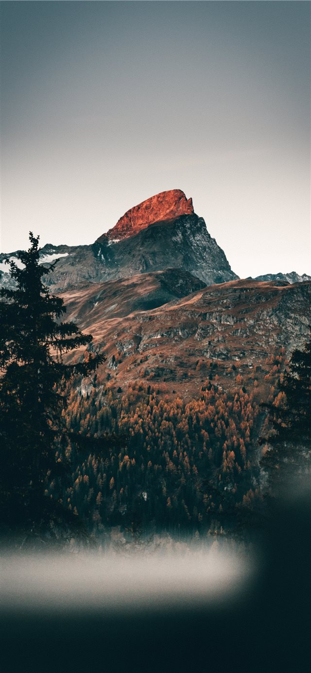 cold mornings in the mountains iPhone X wallpaper