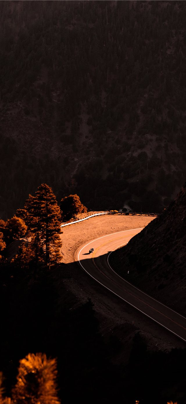 road iPhone 11 wallpaper