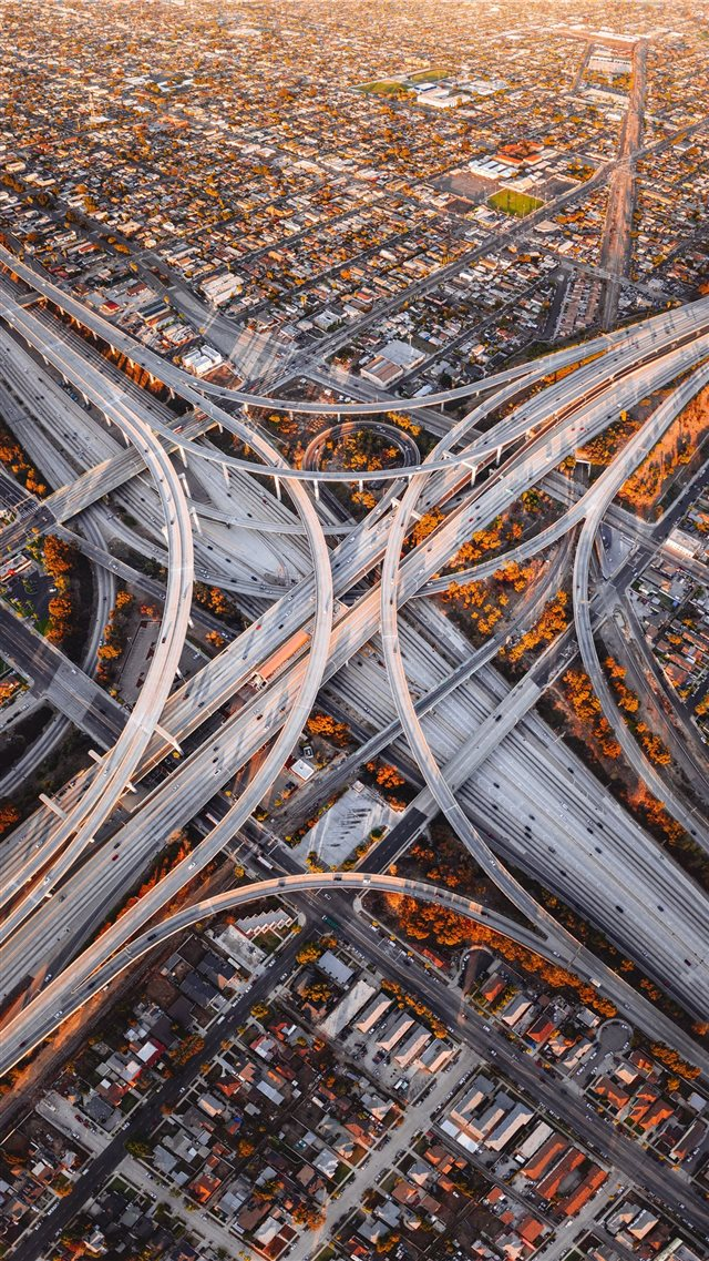 Judge Harry Pregerson Interchange iPhone 8 wallpaper