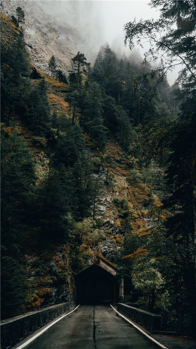 Dark tunnel entrance in front of autumn forest iPhone 8 wallpaper