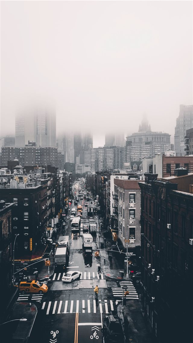 Foggy Day  iPhone 8 wallpaper