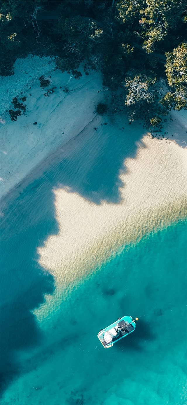 Best swimming beach in Australia iPhone X wallpaper
