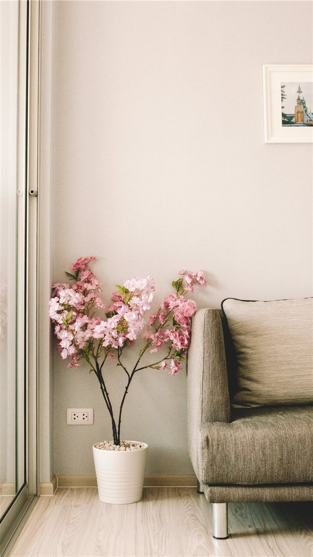 pink flowers beside sofa iPhone 8 wallpaper