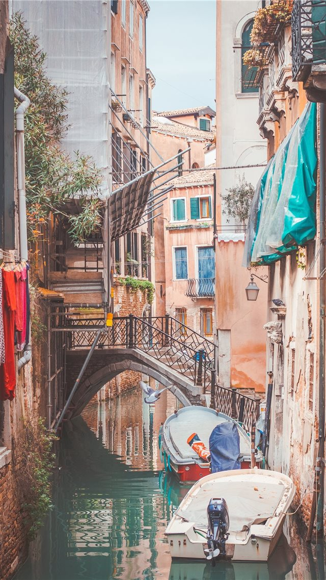 Venezia (Venice)  Italy iPhone 8 wallpaper