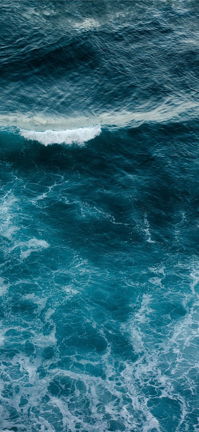 Wild Ocean iPhone X wallpaper
