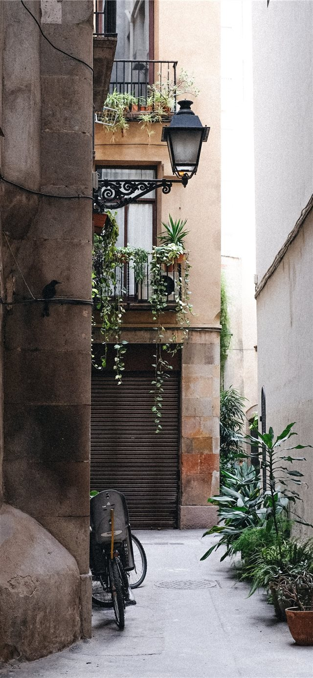 Barcelona  Spain iPhone X wallpaper