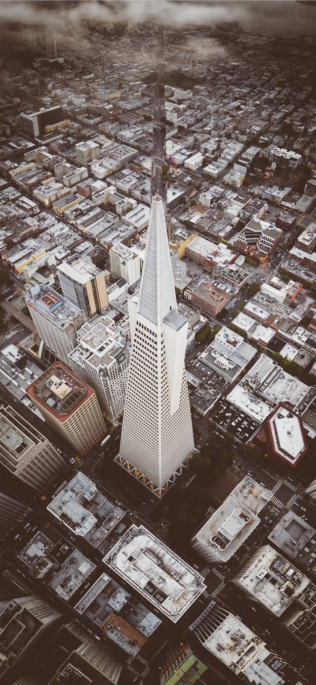 Iconic Transamerica Pyramid building in San Franci... iPhone X wallpaper