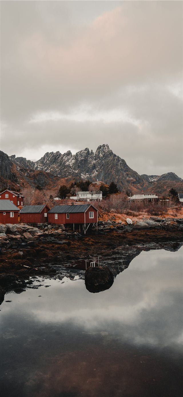 Lofoten  Norway iPhone X wallpaper