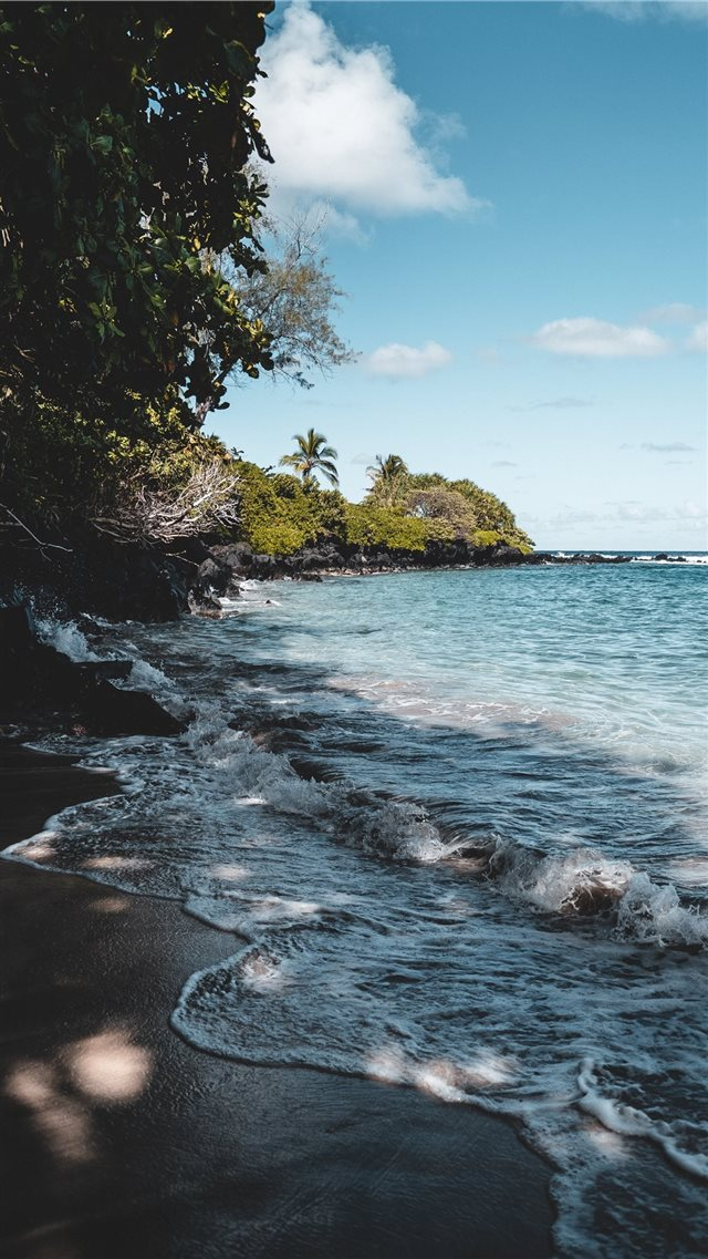 Tropical afternoon in beautiful Maui  Hawaii iPhone SE wallpaper