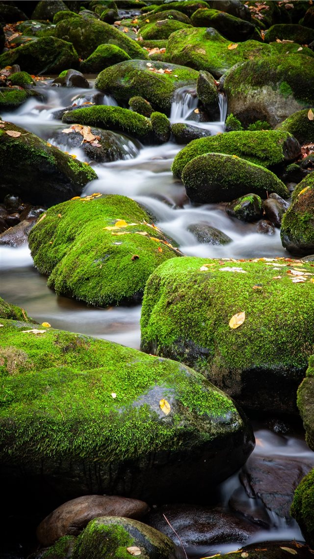 A small cascade over moss covered rocks in Great S... iPhone SE wallpaper