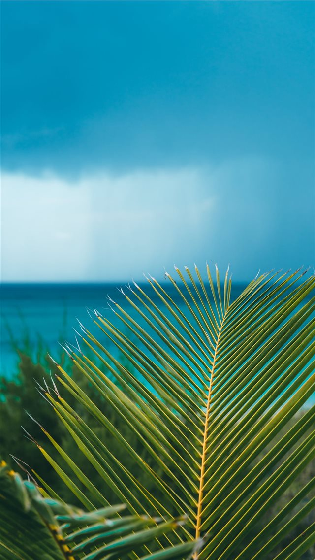 Eleuthera  Bahamas iPhone 8 wallpaper