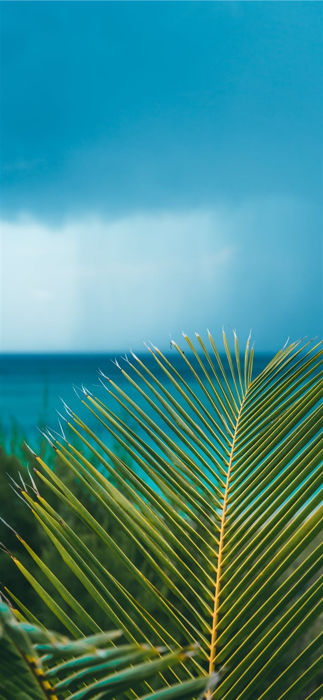 Eleuthera  Bahamas iPhone X wallpaper