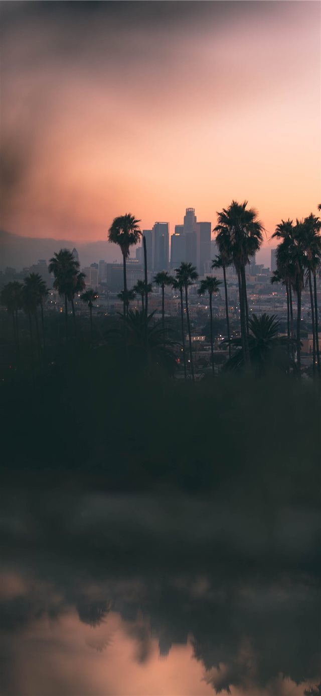 Hazy sunset in East Los Angeles  from Montecito He... iPhone X wallpaper