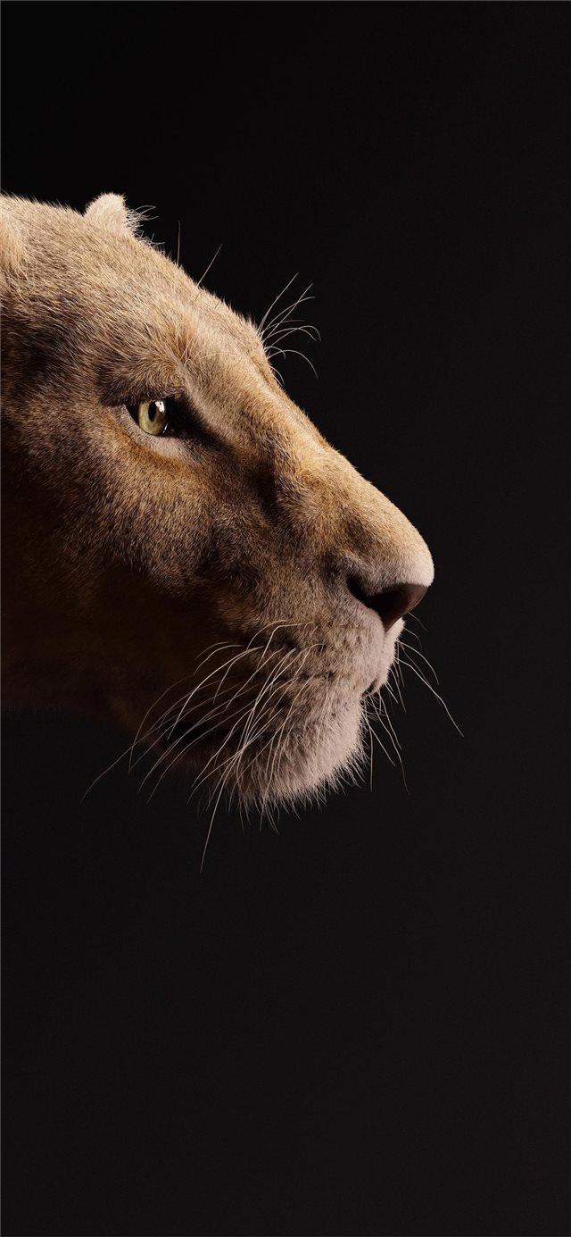 Lion King 2019 Wallpaper Simba And Nala