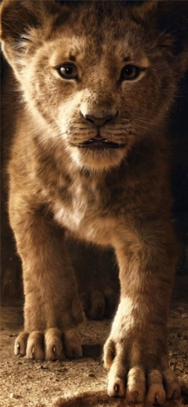 the lion king simba 2019 4k iPhone X wallpaper