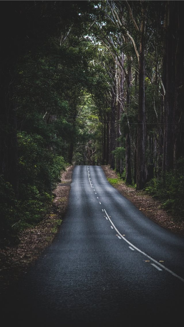 Long Mountain Road iPhone SE wallpaper