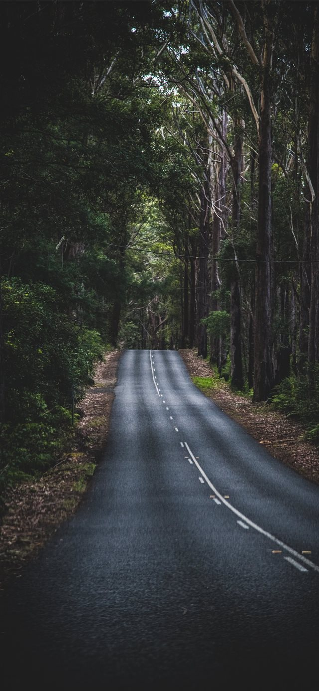 Long Mountain Road iPhone X wallpaper