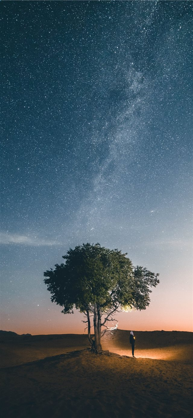 Follow your own star iPhone X wallpaper