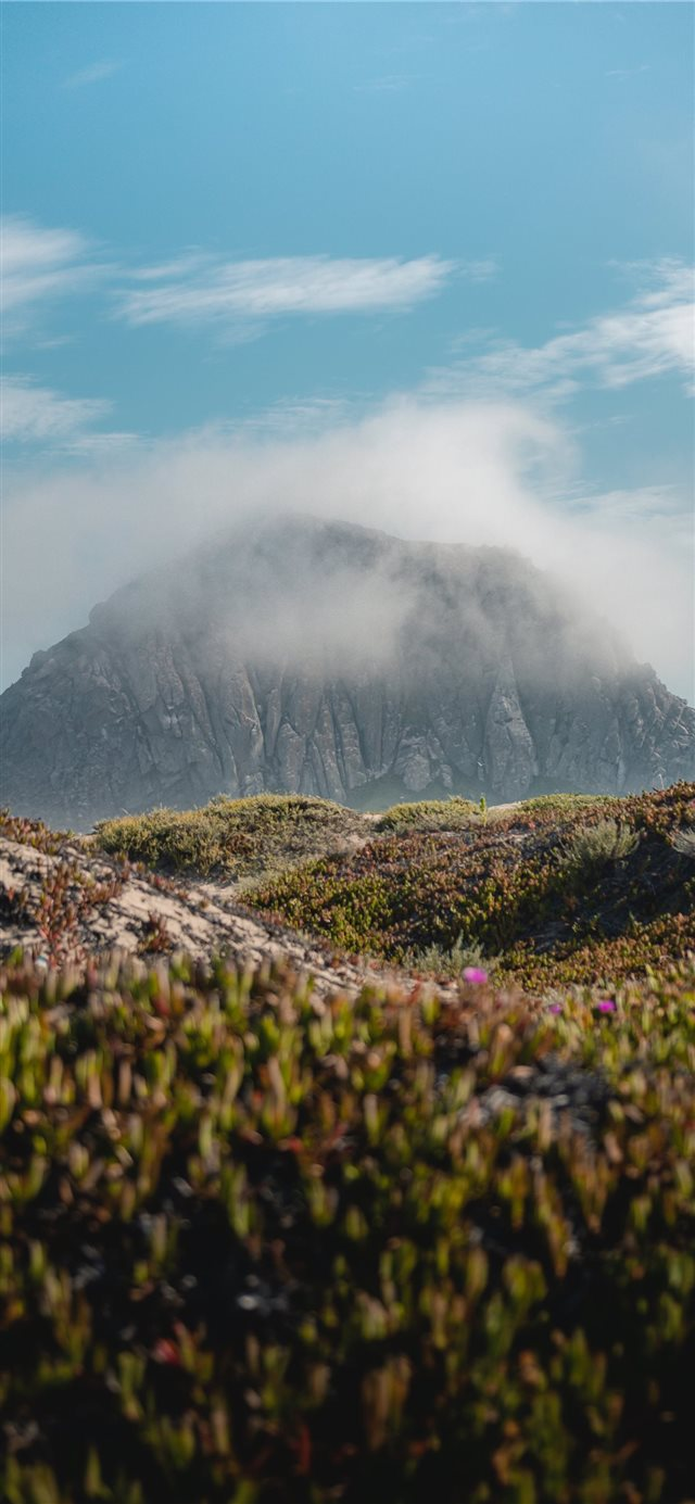 Morro Rock California iPhone X wallpaper