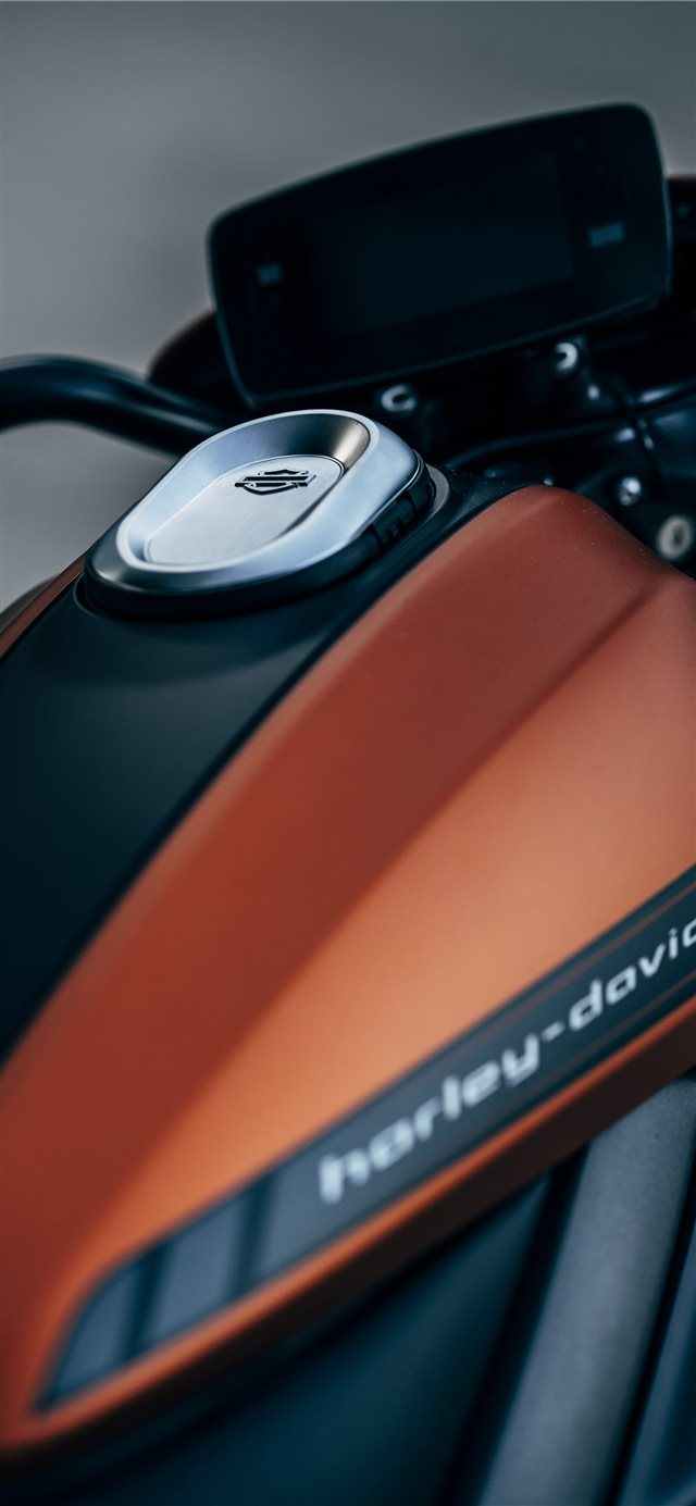 orange and black Harley Davidson backbone motorcyc... iPhone 11 wallpaper