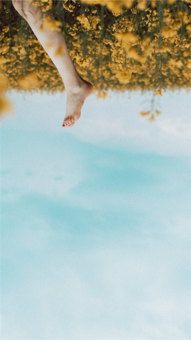 person's foot in a yellow flower field during dayt... iPhone SE wallpaper