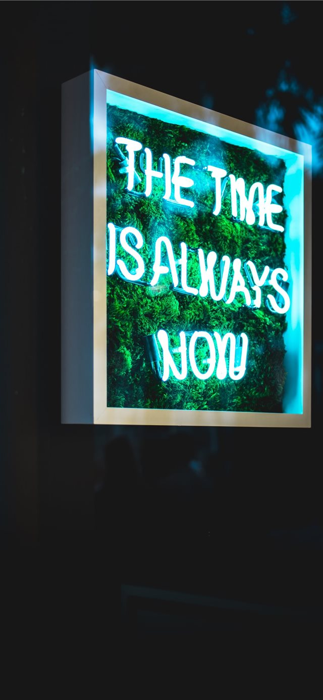 the time is always now neon light signage iPhone 11 wallpaper