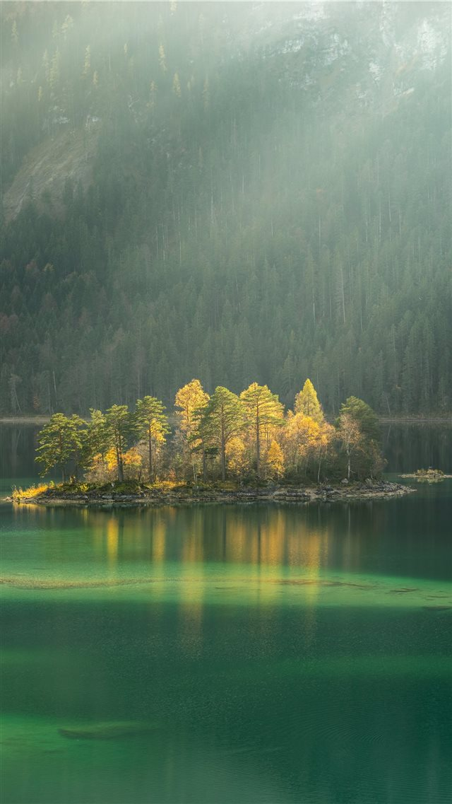 trees surrounded by body water during daytime iPhone SE wallpaper