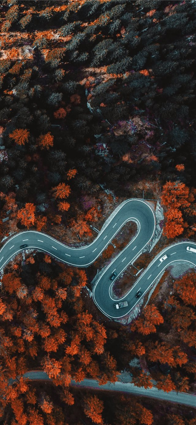 aerial photography of asphalt road surrounded with... iPhone 11 wallpaper