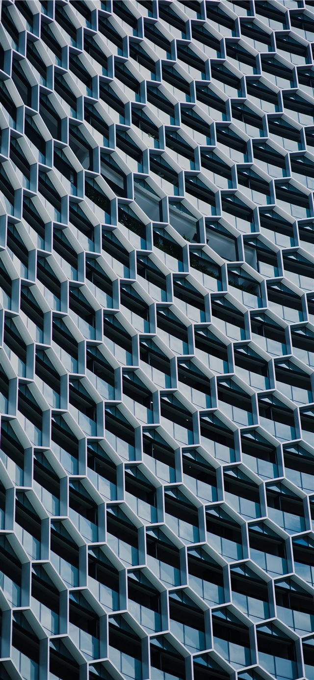 beehive building iPhone 11 wallpaper