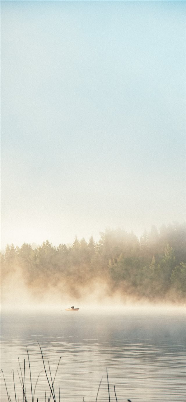 body of water beside trees during daytime iPhone X wallpaper