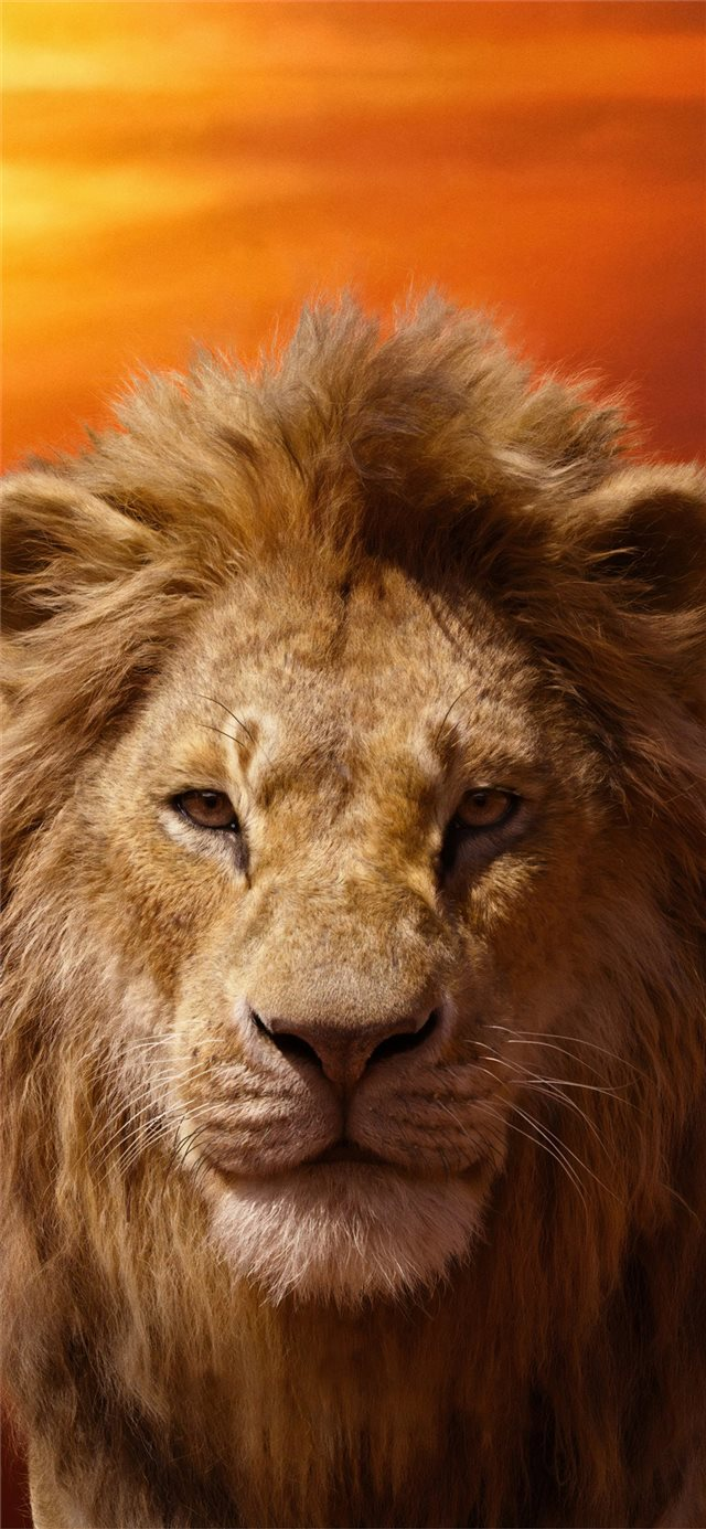 donald glover as simba the lion king 2019 4k iPhone X wallpaper