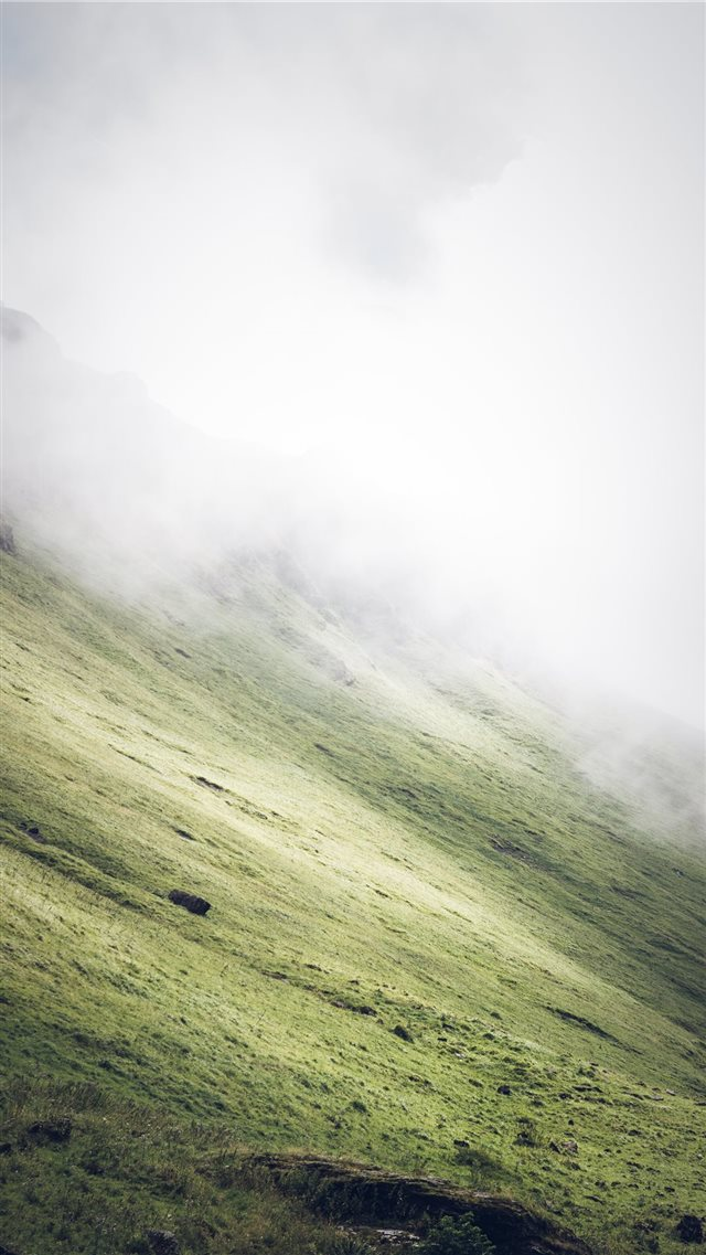 grass covered slope during foggy weather iPhone SE wallpaper