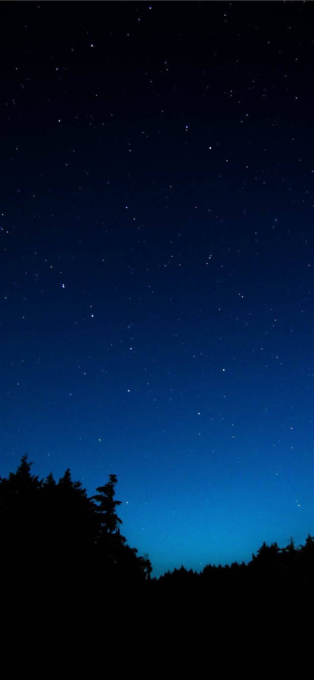 sky at night iPhone 11 wallpaper