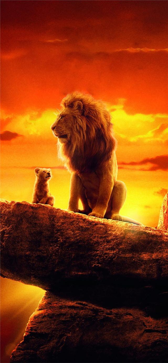 the lion king 2019 4k movie iPhone 11 wallpaper
