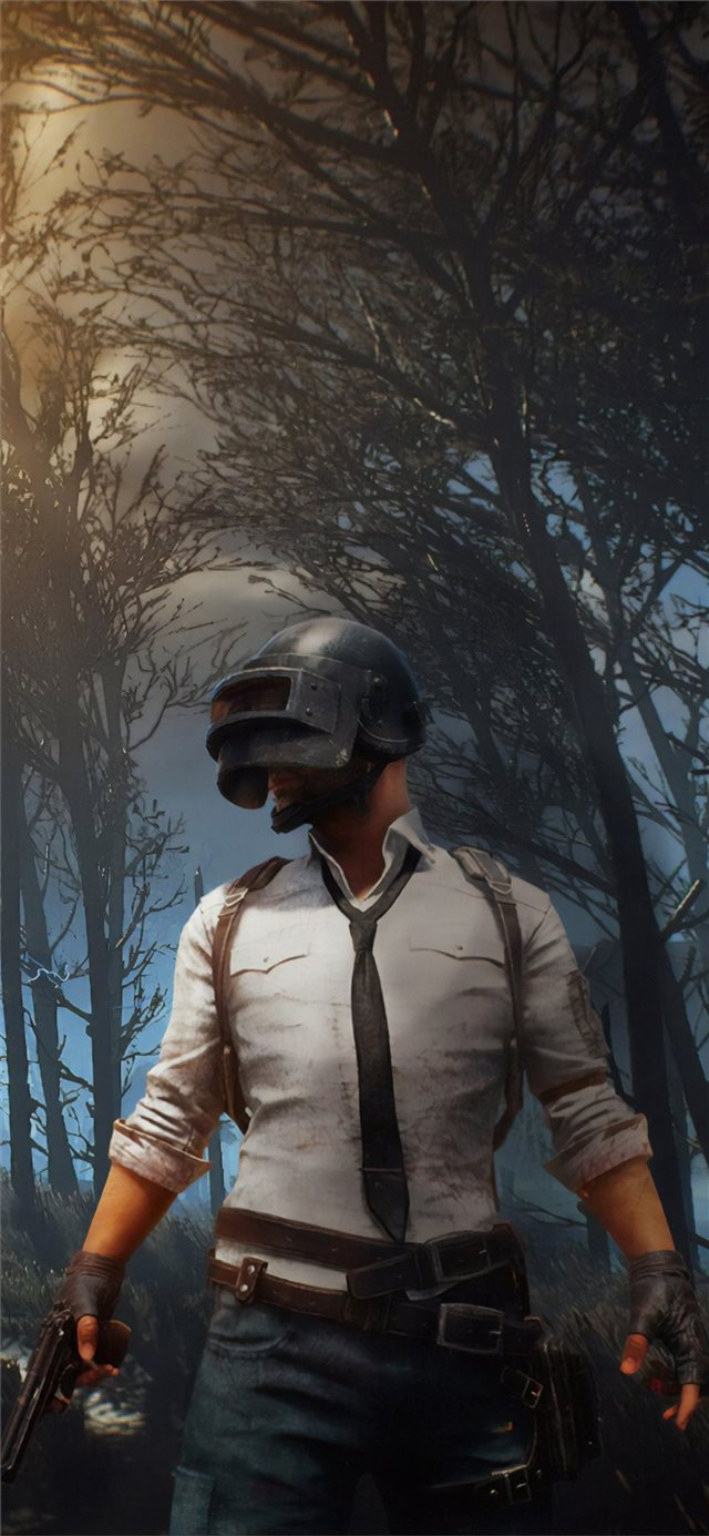 pubg 2019 new 4k iPhone X wallpaper