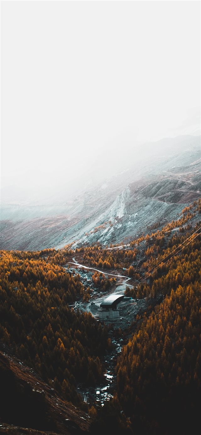 aerial photography of brown trees and mountains un... iPhone X wallpaper