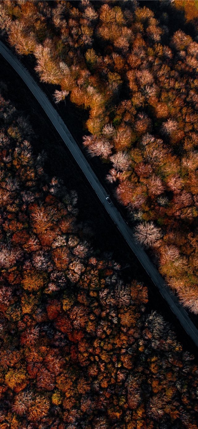 we were going towards an unknown destination while... iPhone X wallpaper