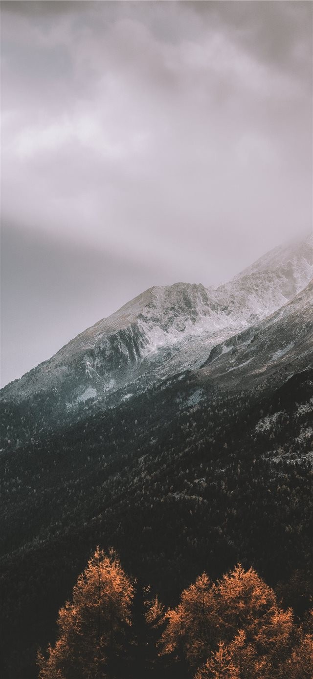 mountain covered by snow during daytime iPhone X wallpaper