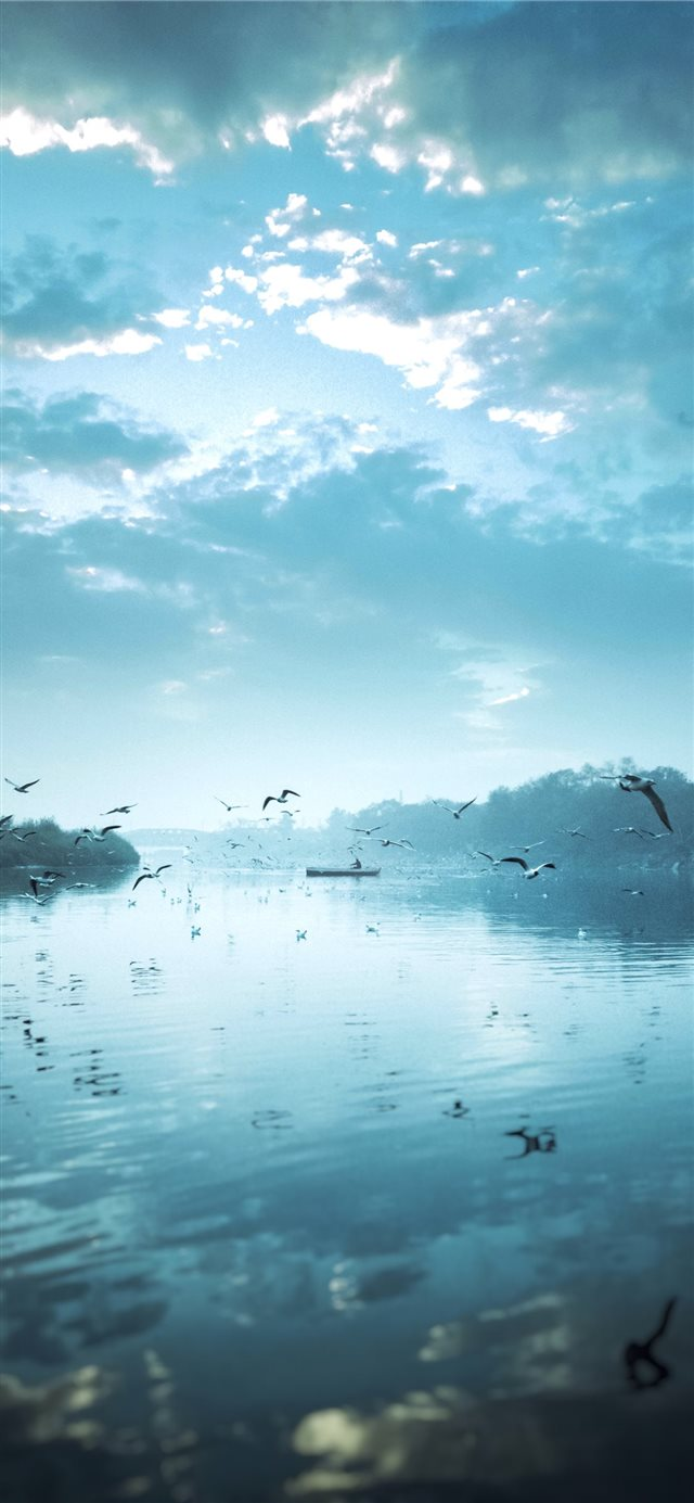 birds flying near body of water under cloudy sky d... iPhone 11 wallpaper
